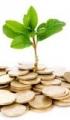Самые надежные инвестиции в бизнес